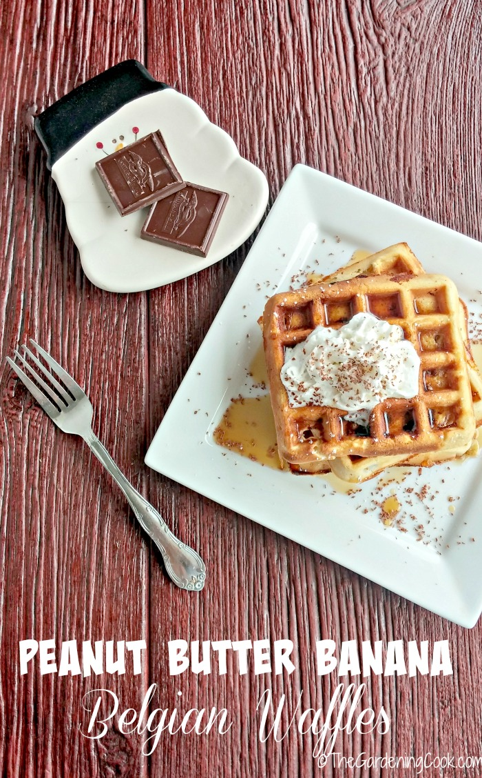 These peanut butter banana Belgian Waffles are the perfect start to a leisurely weekend. thegardeningcook.com