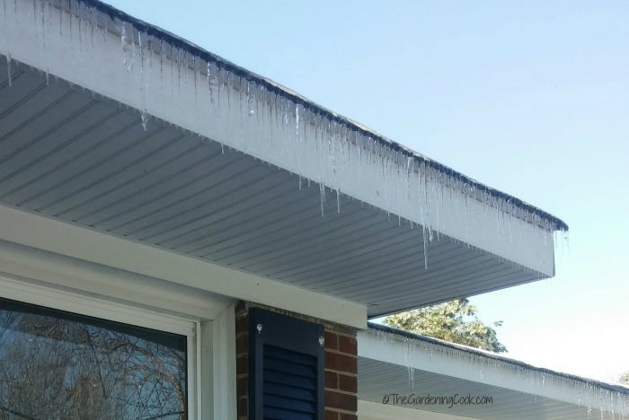 Icicles on the roof are not too common in North Carolina