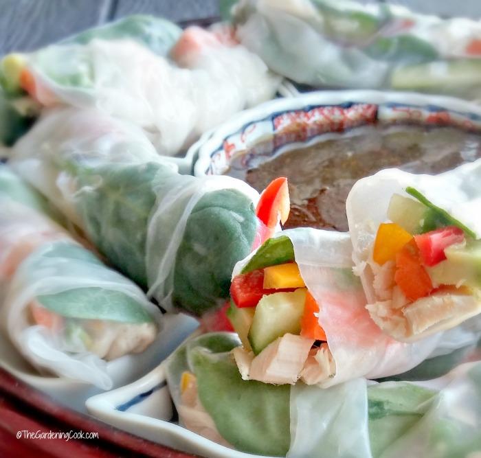 Close up of Albacore tuna rice paper spring rolls