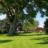 12 tips to a lush, green, lawn