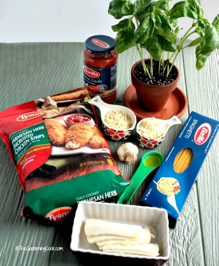 Ingredients for easy Parmesan chicken