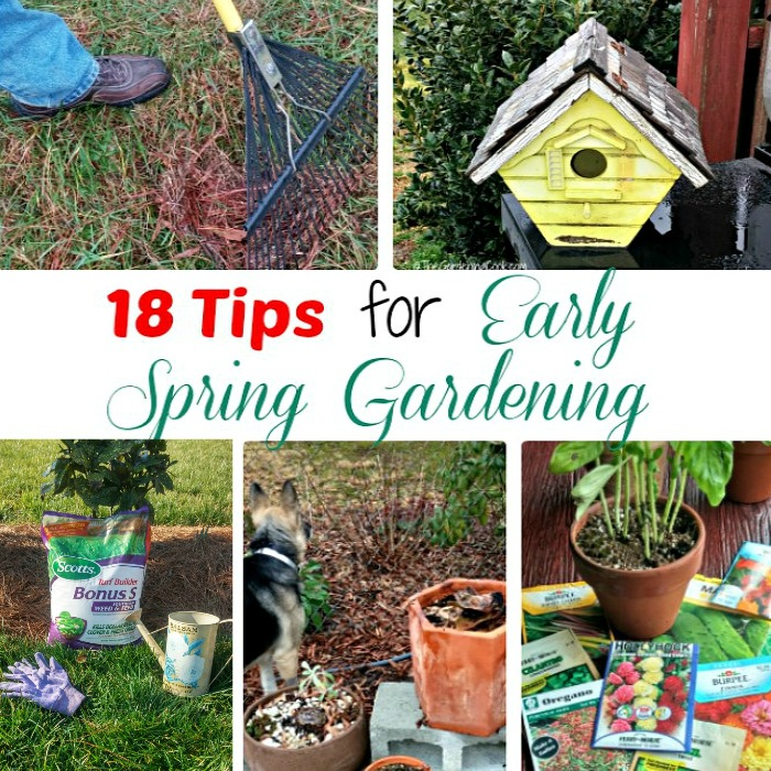 18 tips for early spring gardening