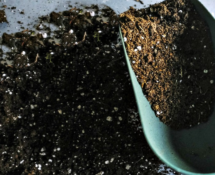 soil and a scoop