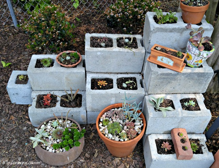 cement blocks succulent planters