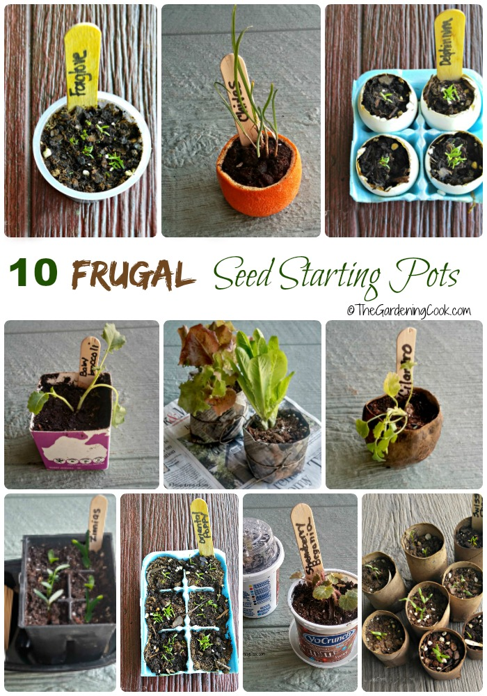 These 10 frugal seed starting pots will help you get a head start on spring without the cost. thegardeningcook.com