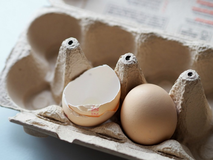 egg shells and egg cartons make great seed starting pots