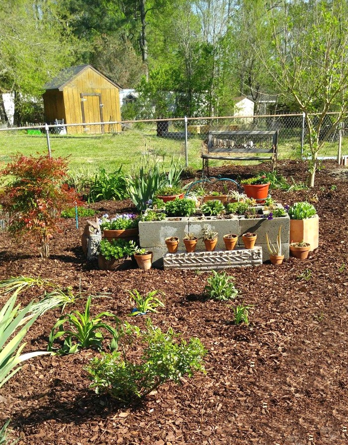 This raised garden bed is made of cement blocks.