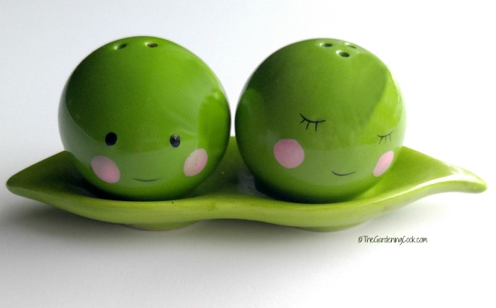 Peas in a pod magnetic salt and pepper shakers