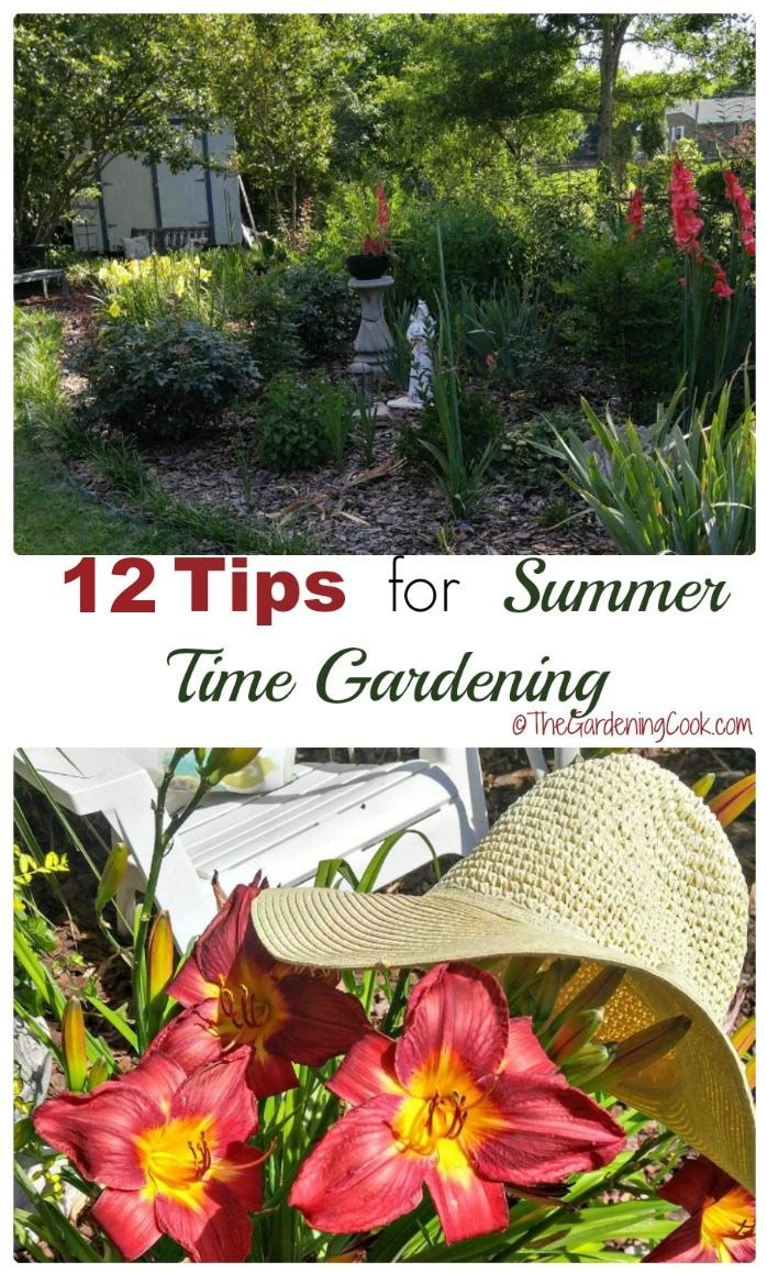 Garden scene and lilies with a straw hat in a collage with words 12 tips for summer time gardening