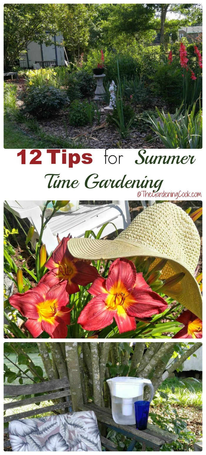 Summer is a hot and buggy time but you can still get the gardening chores done. See my 14 tips for summer time gardening. thegardeningcook.com #ad