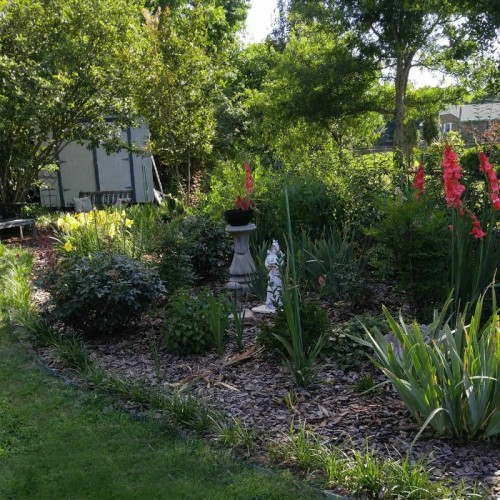 Summer time Gardening Tips