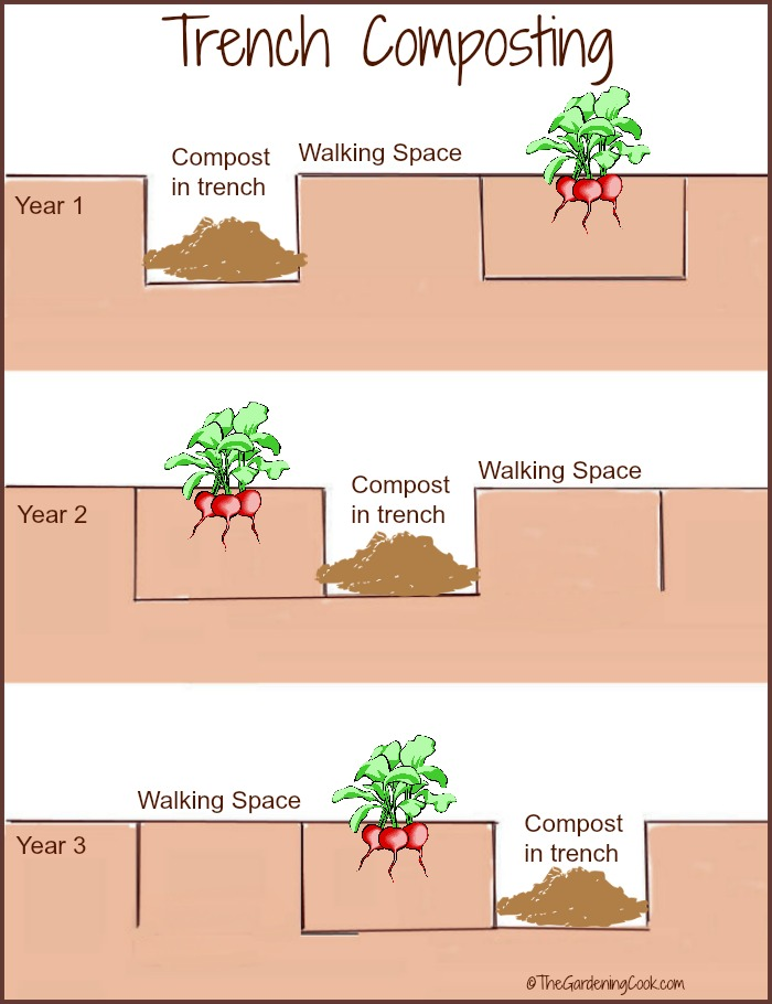 Trench composting is an effective way to combine crop rotation and composting in one easy to use procedure. thegardeningcook.com