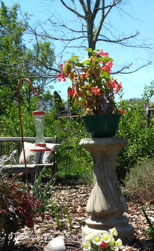 This plant stand was made with a broken bird bath. From trash to treasure.