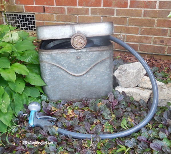 Hose pots are expensive. We transformed a $30 galvanized tub into a lovely pot to hid my hose that looks fabulous in the garden