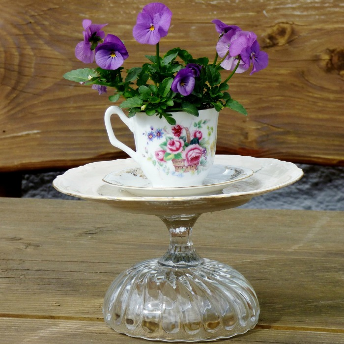 A tea cup and saucer glued to a glass serving dis makes a great garden planter