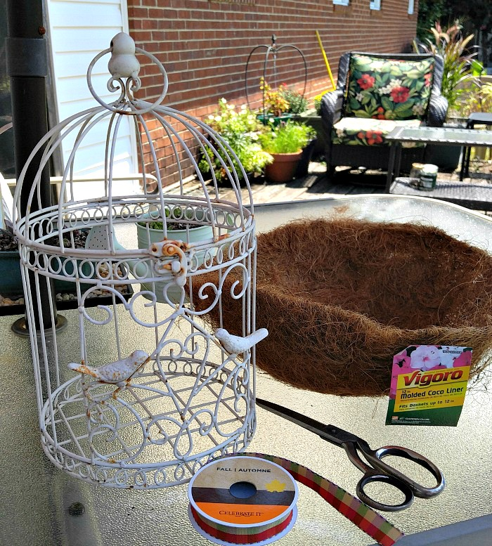 supplies for the succulent-bird-cage-planter