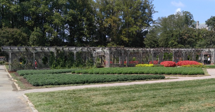 Grape arbor at Biltmore Estates