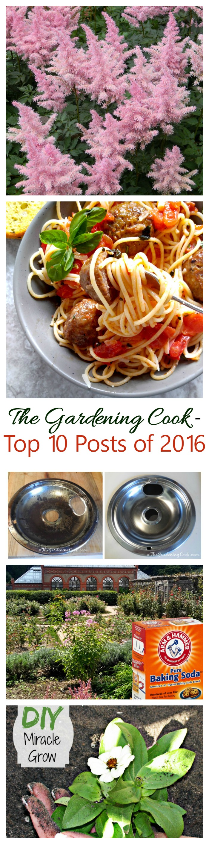 See what made the list of the most popular posts of 2016 for The Gardening Cook. This year, household tips, gardening tips and one great recipe made the top 10!