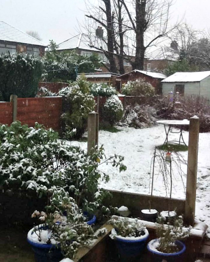 Light snow covered yard in Salford, England
