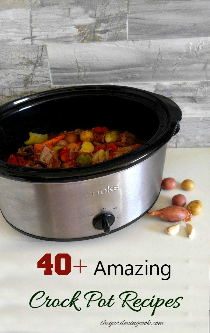 A slow cooker saves cooking time and make the house smell great. These 40+ Crock Pot Recipes will give you a different one to try each day of the month!