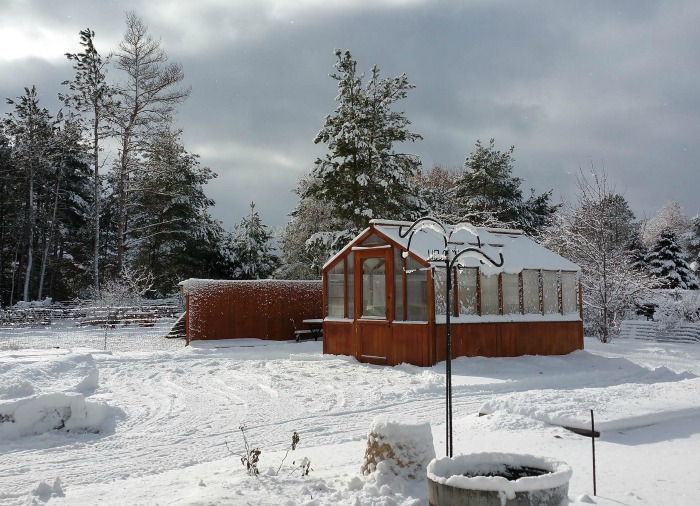 Winter snow covered greenhouse Michigan.