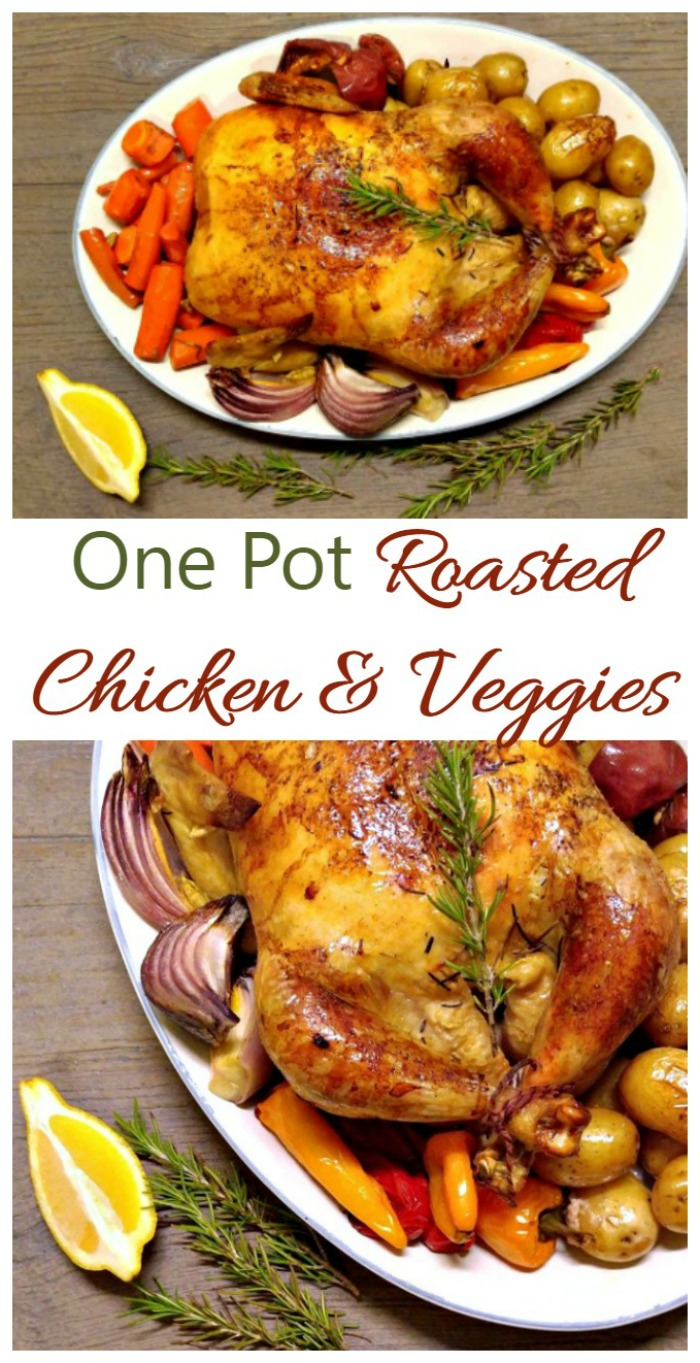 One Pot Roasted Chicken and Vegetables recipe