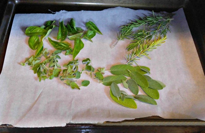 oven drying herbs