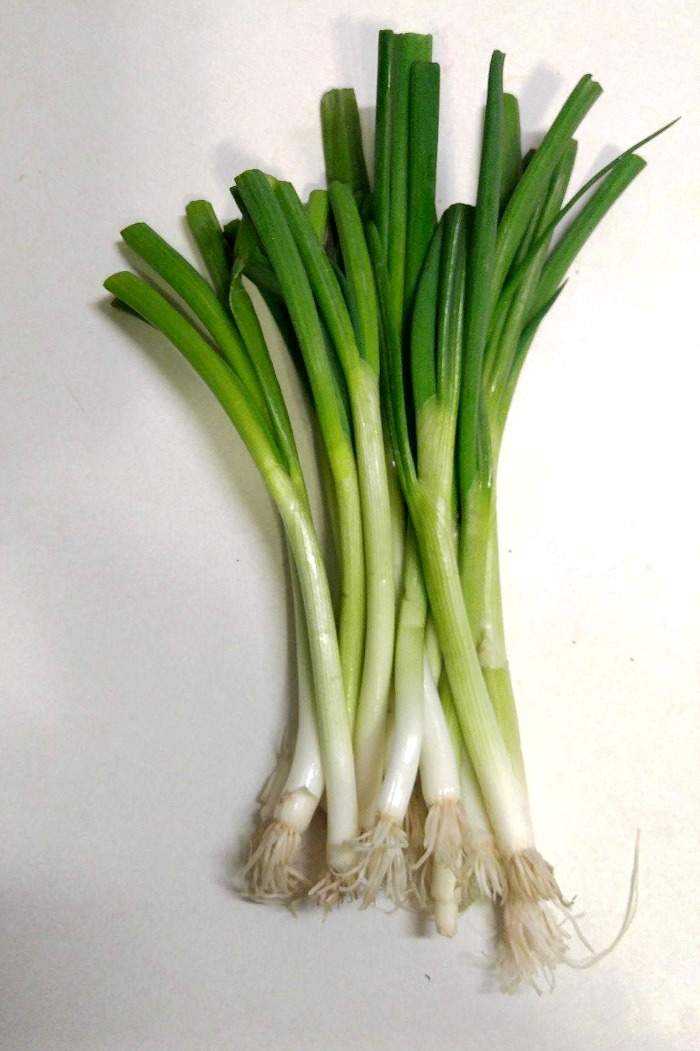 The longer the roots are, the quicker the onions will regrow