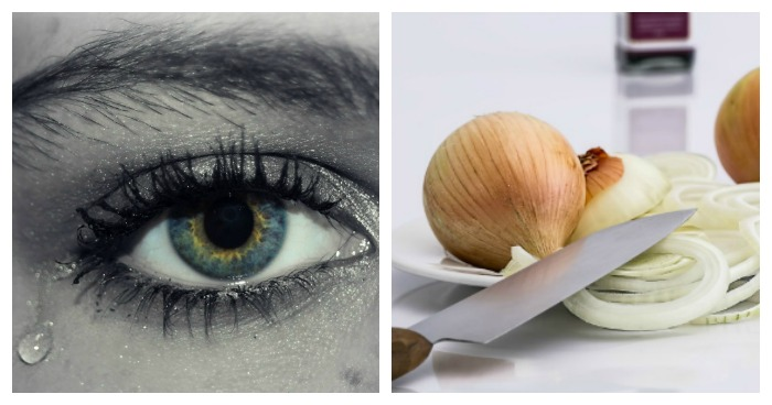 Why Do Onions Make You Cry The Answer Is In The Soil