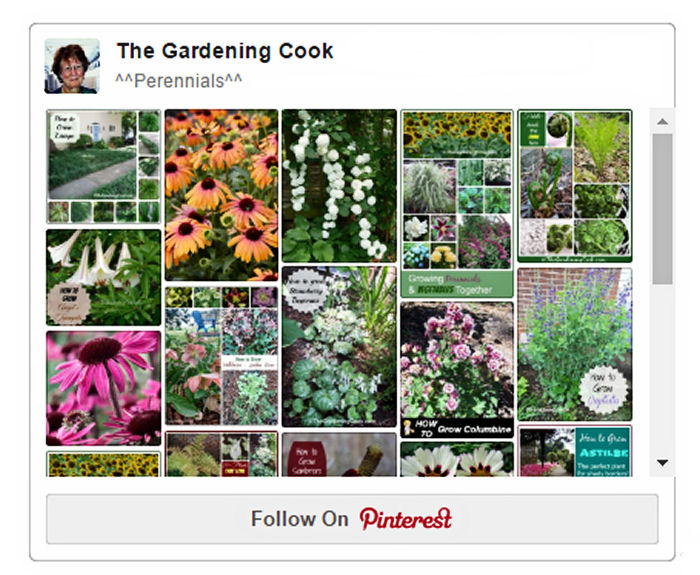 Perennials Board on Pinterest