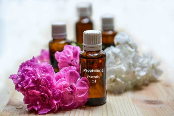10 Drops of peppermint essential oil in a small bottle of water makes a good ant repellent