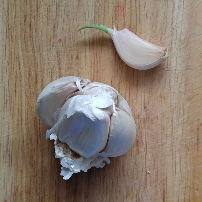 Sprouted garlic clove all ready to try to root.