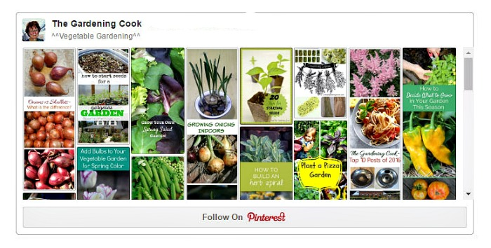 Vegetable Gardening Board on Pinterest