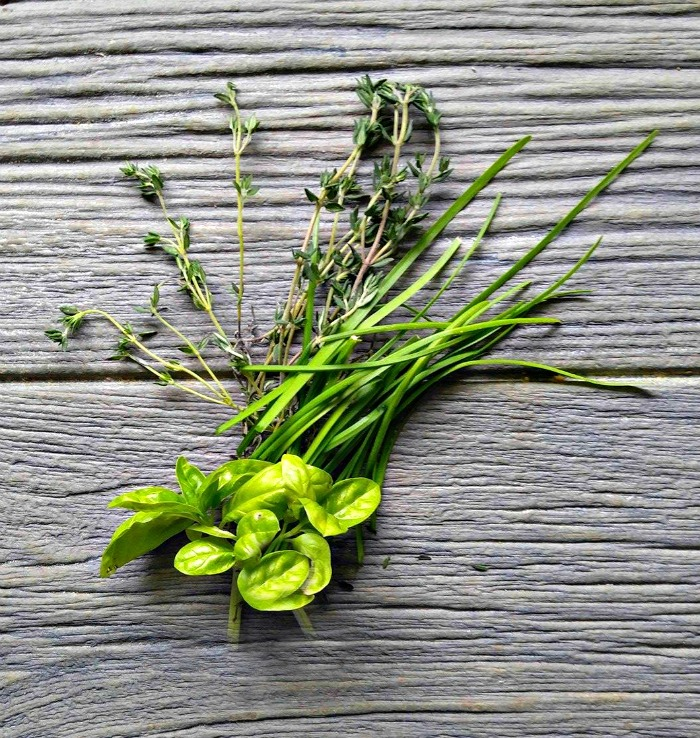 Fresh thyme, basil and chives