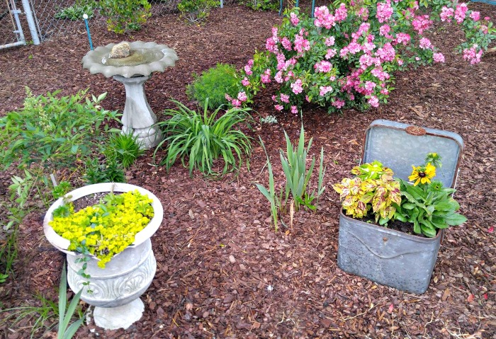 Mulch keeps garden beds weed free