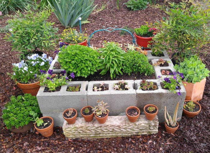 Raised garden bed made of cement blocks.
