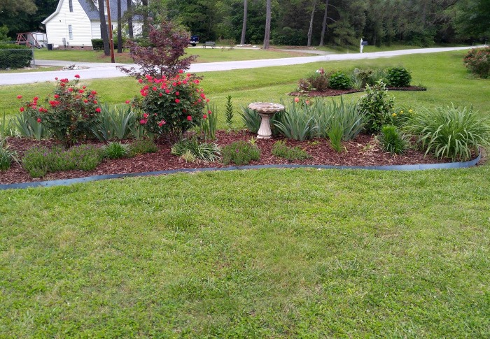 Large garden beds with spring and summer blooming plants