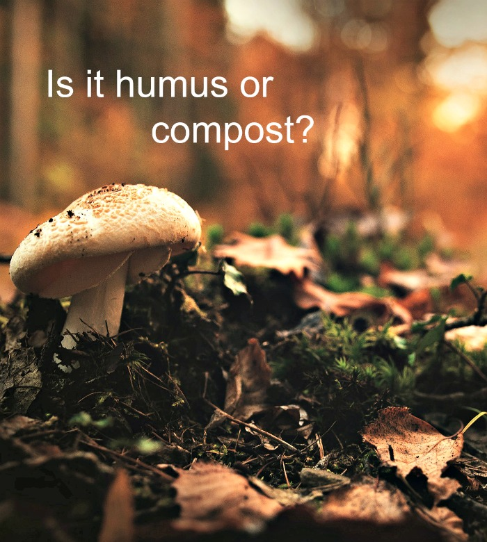 Do you know the difference between humus and compost? The terms are used interchangeably but they are two different things.