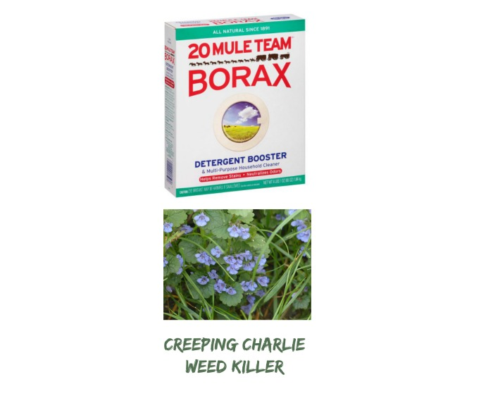 Label for Borax Weed Killre