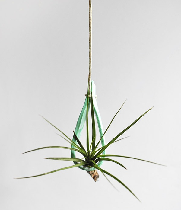 Hanging air plant holder from delineateyourdwelling.com