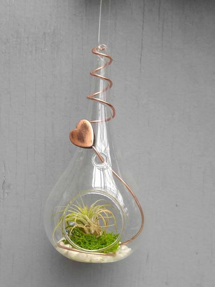 Air plant holder with copper heart