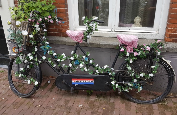 Bicycle with vines