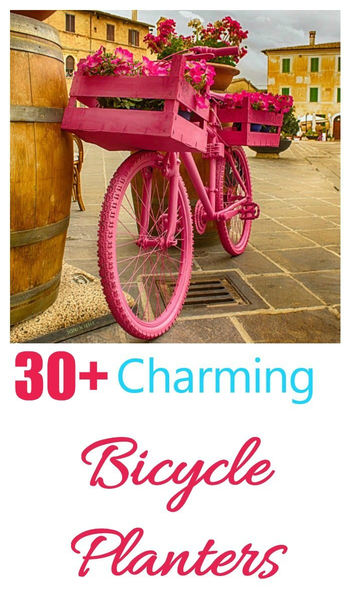 Bicycle with baskets all painted pink parked near a barrel, and words 30+ charming bicycle planters.