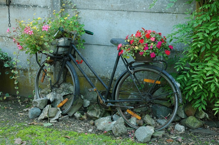 Recycled bicycle planter