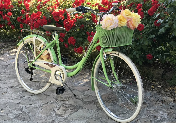 Pale green bicycle planter
