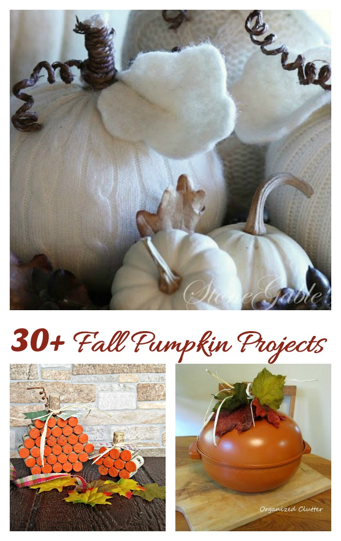 Get some inspiration for decorating this autumn with one of these 30 fall pumpkin projects.