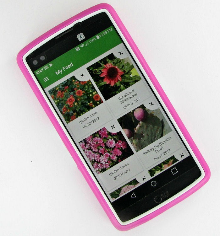 PlantSnap feed