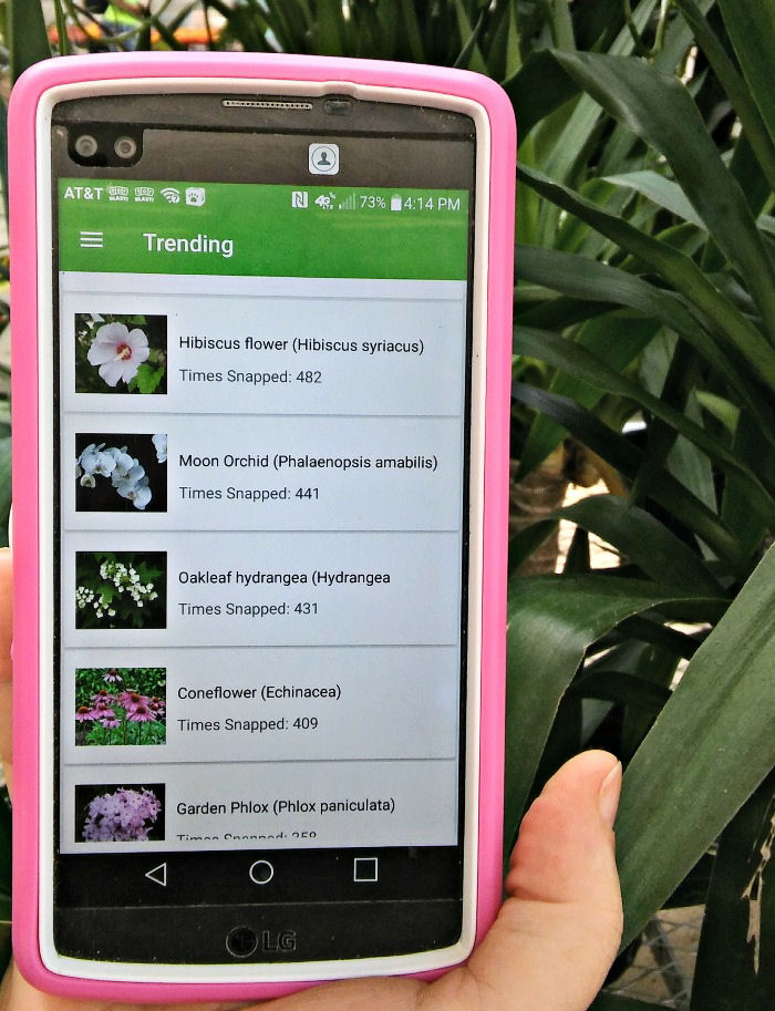 PlantSnap trending feed