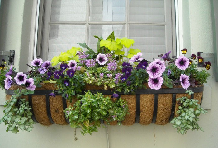 Metal window box