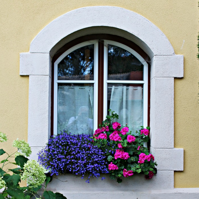 Window box planters